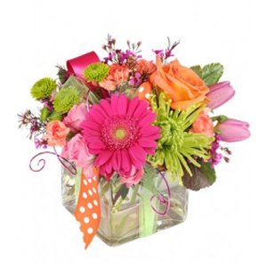 Order Happy Thoughts flowers