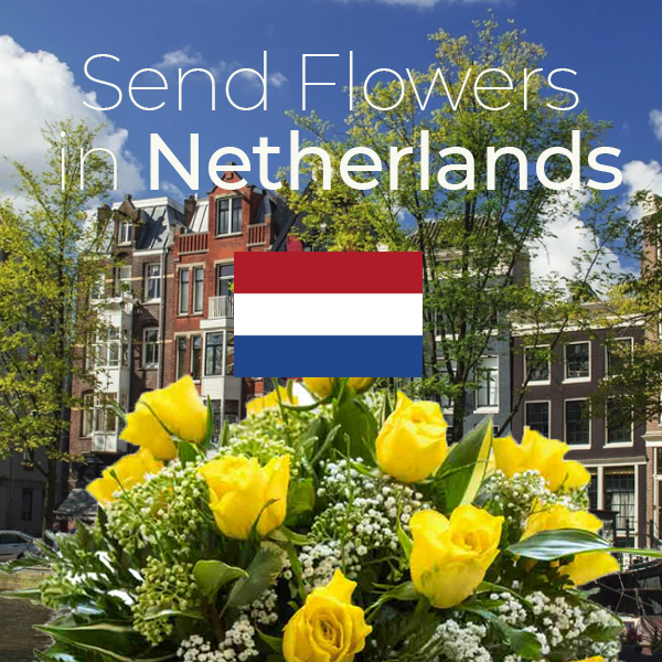 Sameday flowers delivered in Netherlands