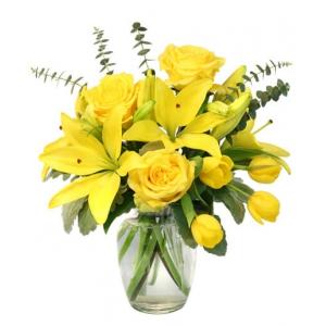 Order Sunshine flowers